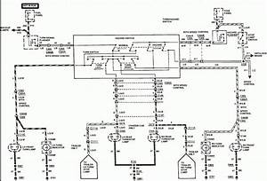 Trailer Wiring Diagram With Reverse Light