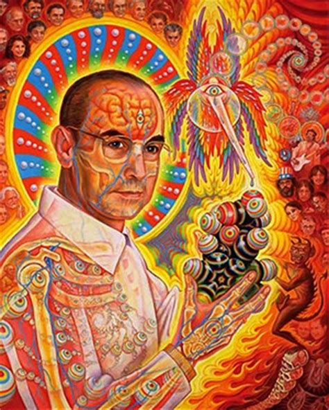 psychedelic information theory   modern shamanism