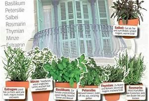Wann Balkon Bepflanzen : balkon bepflanzen jetzt kann s losgehen erwin m ller wohlf hlen zu hause ~ Frokenaadalensverden.com Haus und Dekorationen