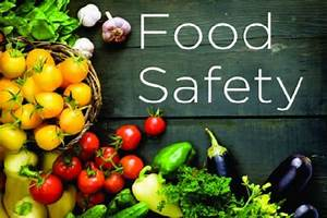 Ministry of Health stresses food safety - St. Lucia News ...