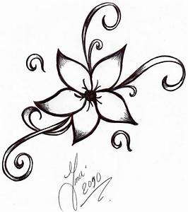 Easy To Draw Hawaiian Flowers Easy Flower Drawing ...
