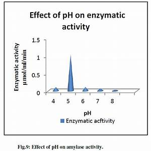 Ufe0f Effect Of Ph On Enzyme Activity  Temperature Effects