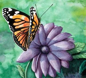 Butterfly and Flower Original Watercolor Painting