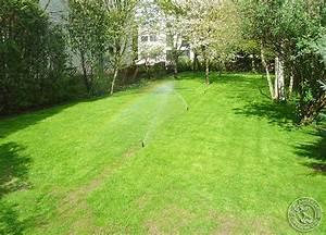 Arrosage Automatique Pelouse : arrosage garches ange jardin ~ Melissatoandfro.com Idées de Décoration