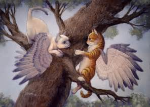 cats with wings esp winged cats they really do exist sort of
