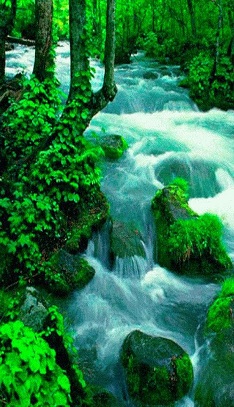 The perfect croatia animated gif for your conversation. Waterfalls Lakes Plitvice, Croatia (National Park) Is ...