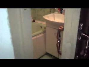 do not disturb cat closes door in bathroom for privacy With cat bathroom door