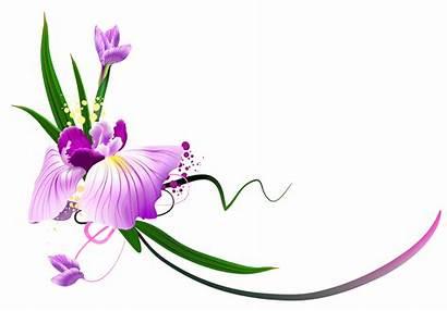 Purple Floral Clipart Decorative Transparent Yopriceville