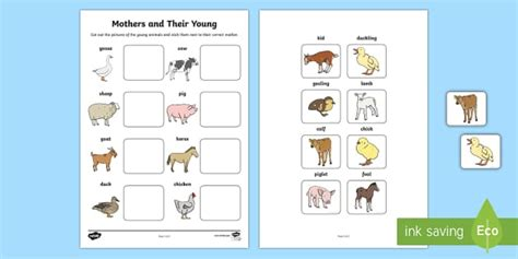 mothers   young farm animals matching activity