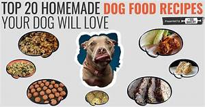 Homemade Dog Food Recipes For Dogs With Cancer Crazy