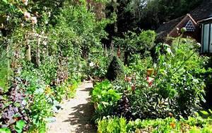 Potager photos kitchen garden