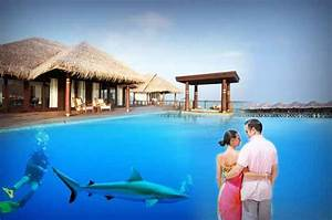 honeymoon in maldives honeymoon places in maldives With places to spend honeymoon