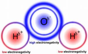 Atoms & Molecules: e-chapter — The Biology Primer