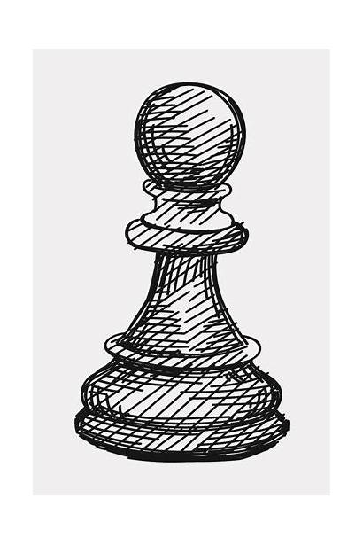 Chess Pawn Pieces Pawns Queen Knights Bishops