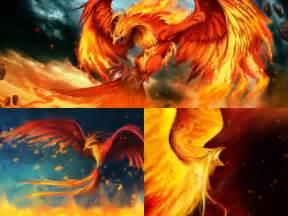 Fire Phoenix Animated