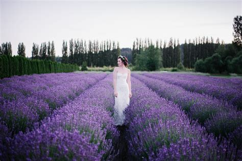 Woodinville Lavender Perfect Outdoor Wedding Venue