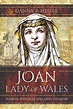 Joan, Lady of Wales: Power and Politics of King John's ...