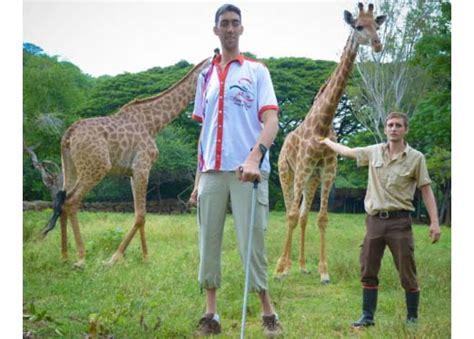 le frontale la plus puissante au monde l homme le plus grand du monde avec les girafes 224 maurice