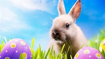 Happy Easter 4k Desktop Wallpapers