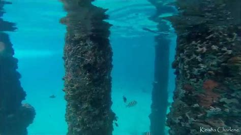 Crash Boat Song by Snorkeling At Crash Boat Beach Pillars Of The Pier Youtube