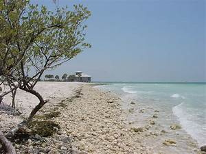 filehoneymoon island state park image 2jpg With honeymoon island state park