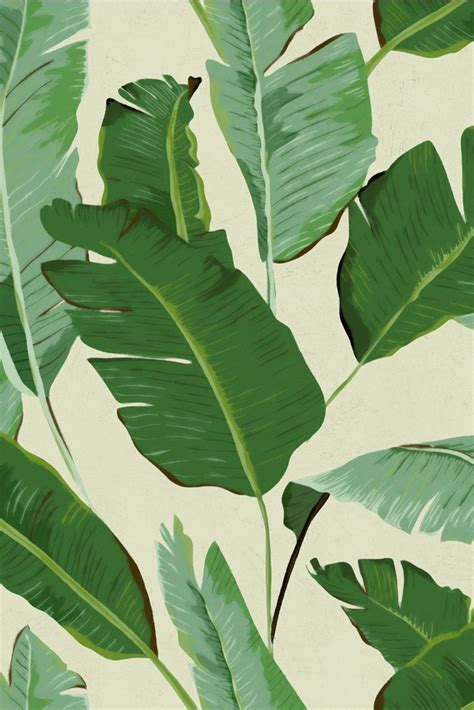 mind  gap banana leaves wallpaper