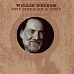 Listen Free to Willie Nelson - The Party's Over Radio ...