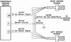 2002 Honda Civic O2 Sensor Wiring Diagram