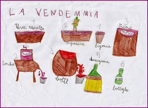 studiamando liberamente luva ed il vino