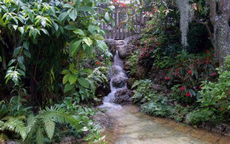 beautiful garden magical pond nature  hd desktop