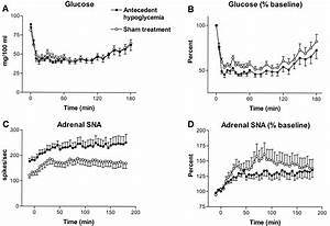 Effect Of Acute And Antecedent Hypoglycemia On Sympathetic Neural Activity And Catecholamine