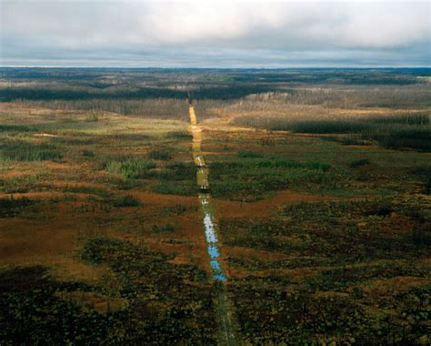 The Boreal Forest Canada Amazing Places
