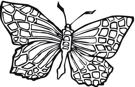 Coloring Images Of Butterflies by Free Printable Butterfly Coloring Pages For