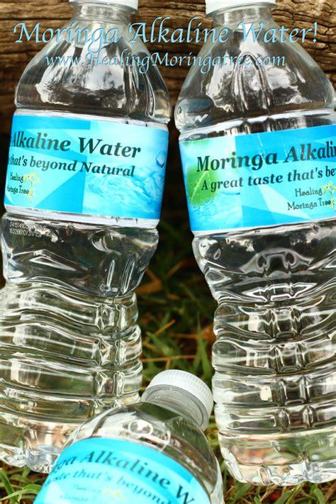 moringa alkaline water moringa trees  sale