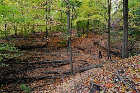 walking trails toronto play sports blogto