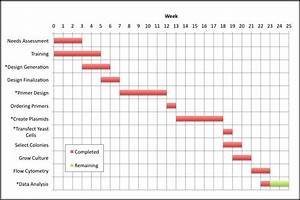 Download Creating Gantt Charts And Timelines For