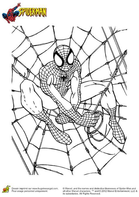 coloriage spider man toile piege