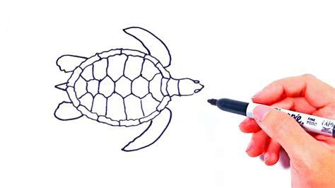 como dibujar una tortuga marina dibujo tortuga de mar youtube