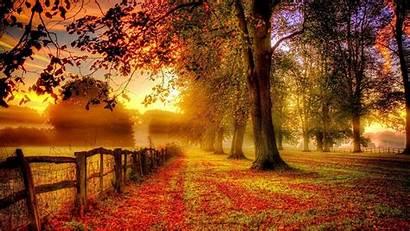 Fall Season Wallpapers Nature Resolution Down Baltana