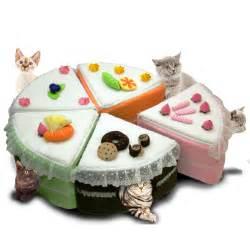 fancy cat beds cat beds caves and condos elite pet inc