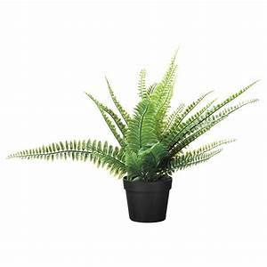 Plante D Extérieur En Pot : fejka plante artificielle en pot foug re int rieur ~ Dailycaller-alerts.com Idées de Décoration