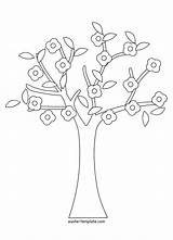 Tree Coloring Pages Cherry Banyan Baobab Colouring Trees Drawing Printable Getcolorings Sp Getdrawings Banya sketch template
