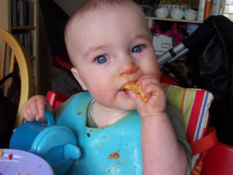 Getting Started Baby Led Weaning Autos Post