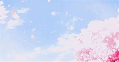 Cherry Blossom Gifs