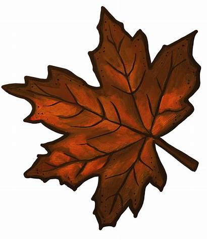 Leaf Maple Clipart Clip Brown Leaves Fall