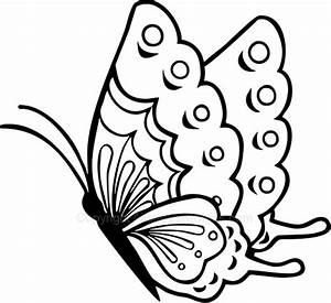 Butterflies Side View Drawings Sketch Coloring Page