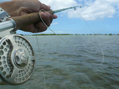 Country Club Fishing Boat by Fishing In Oahu Guided Fishing With Boat Tokyo Fly
