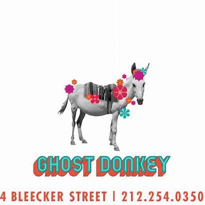 Donkey Ghost
