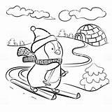 Coloring Kinder Ausmalbilder Pinguin Ausmalen Malvorlagen Malvorlage Vector Zum Penguin Ski Mehr Skis Vorlage Istockphoto Premium Homework Vektor Emu Istock sketch template