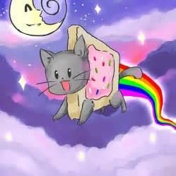 nayan cat 1000 images about nyan cat on nyan cat pop